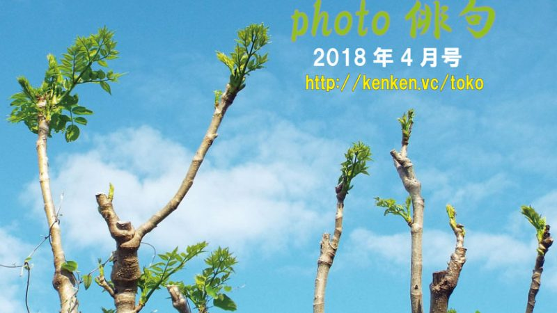 Photo俳句2018年4月号